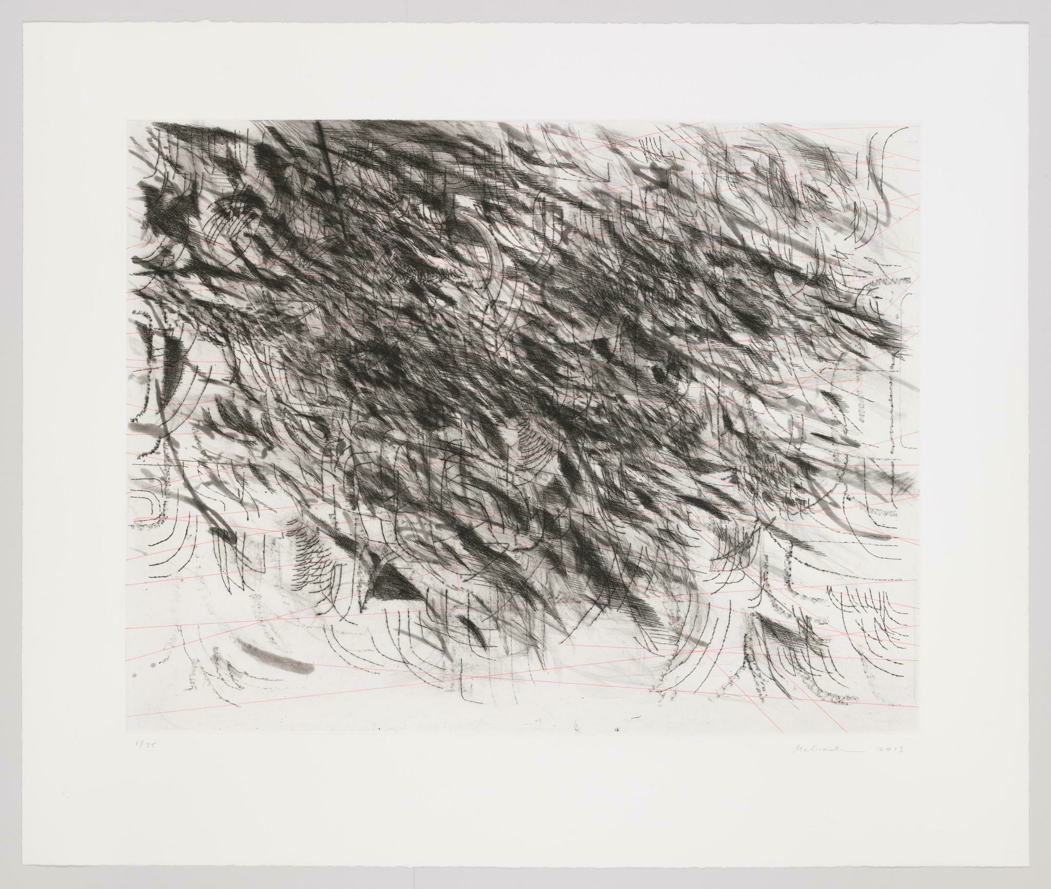 small and sweeping charcoal etchings splay out across a canvass amidst straight pink lines