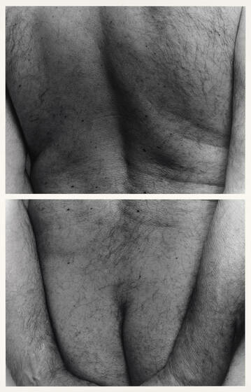 A man's hairy backside, from shoulders to buttocks, framed by two arms, shown acros two photographs