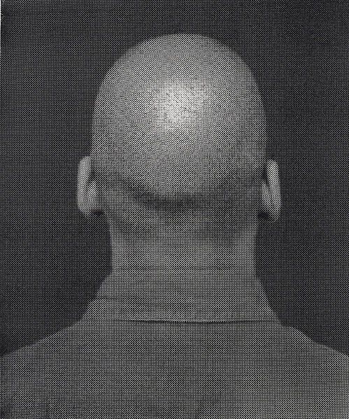 A silkscreen self-portrait of Glenn Ligon's head from the back.