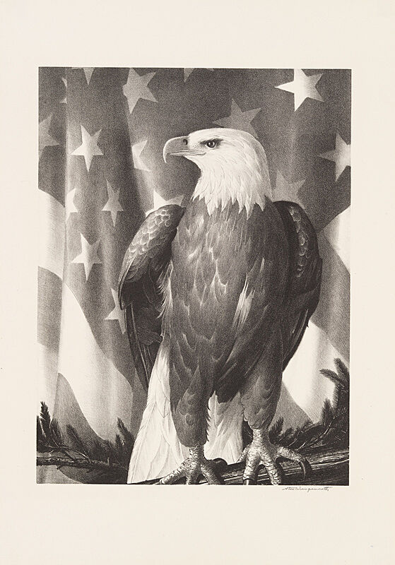 A print of an eagle against an American flag.