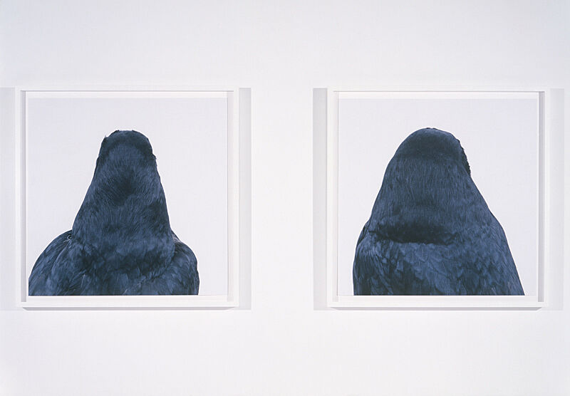 Two artworks of dark silhouettes.