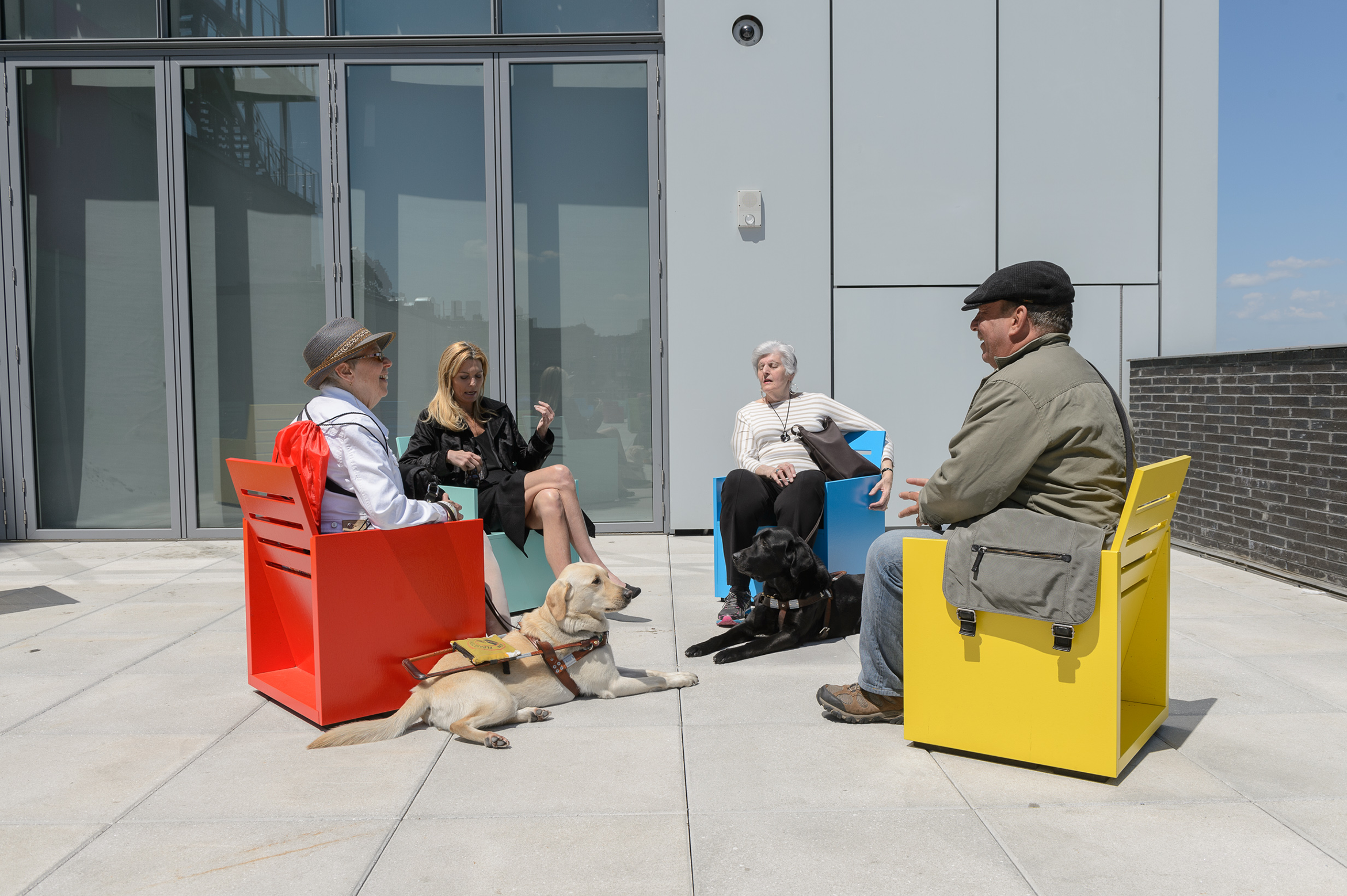 A service dog sits with four visitors in an installation by Mary Heilmann on the fifth floor terrace, May 2015.