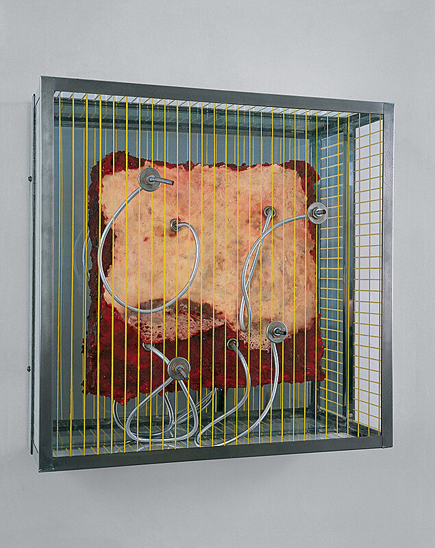 A sculpture by Paul Thek. Meat in Plexiglas box.