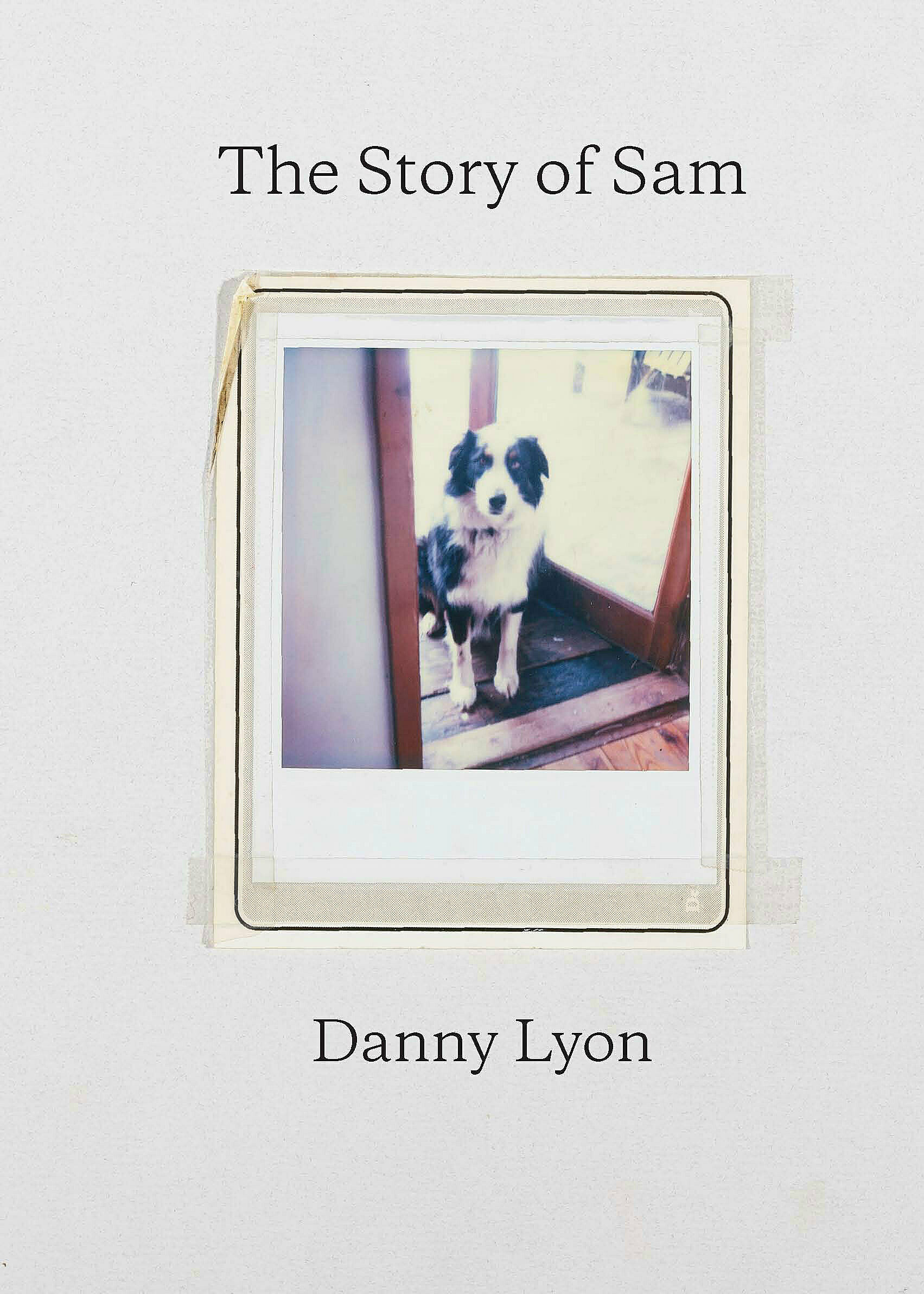 A book cover by Danny Lyon featuring his Australian Shepard dog Sam.