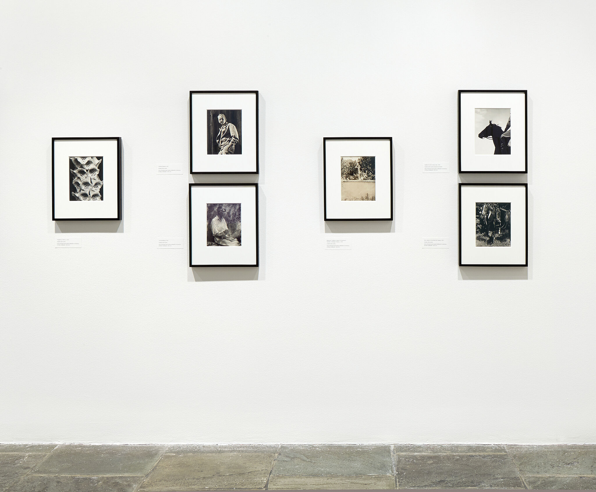 Six framed photographs on a gallery wall.