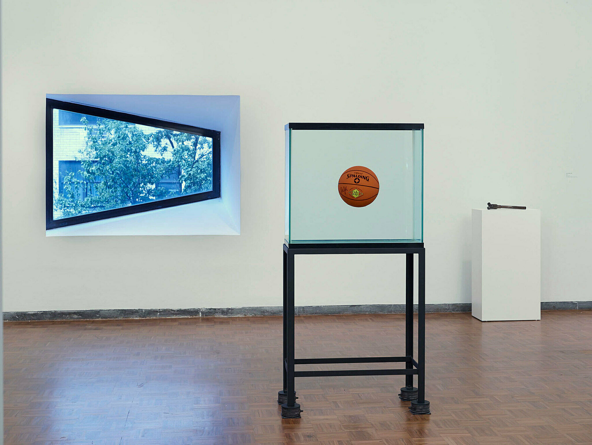 Suspend basketball sculpture with a window behind it.