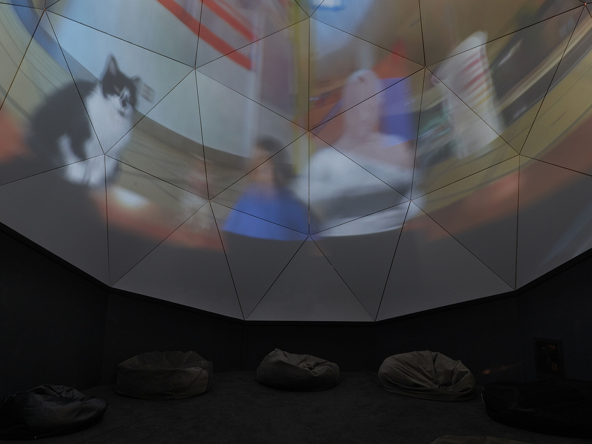 A video projection of a cat and people on a domed screen.
