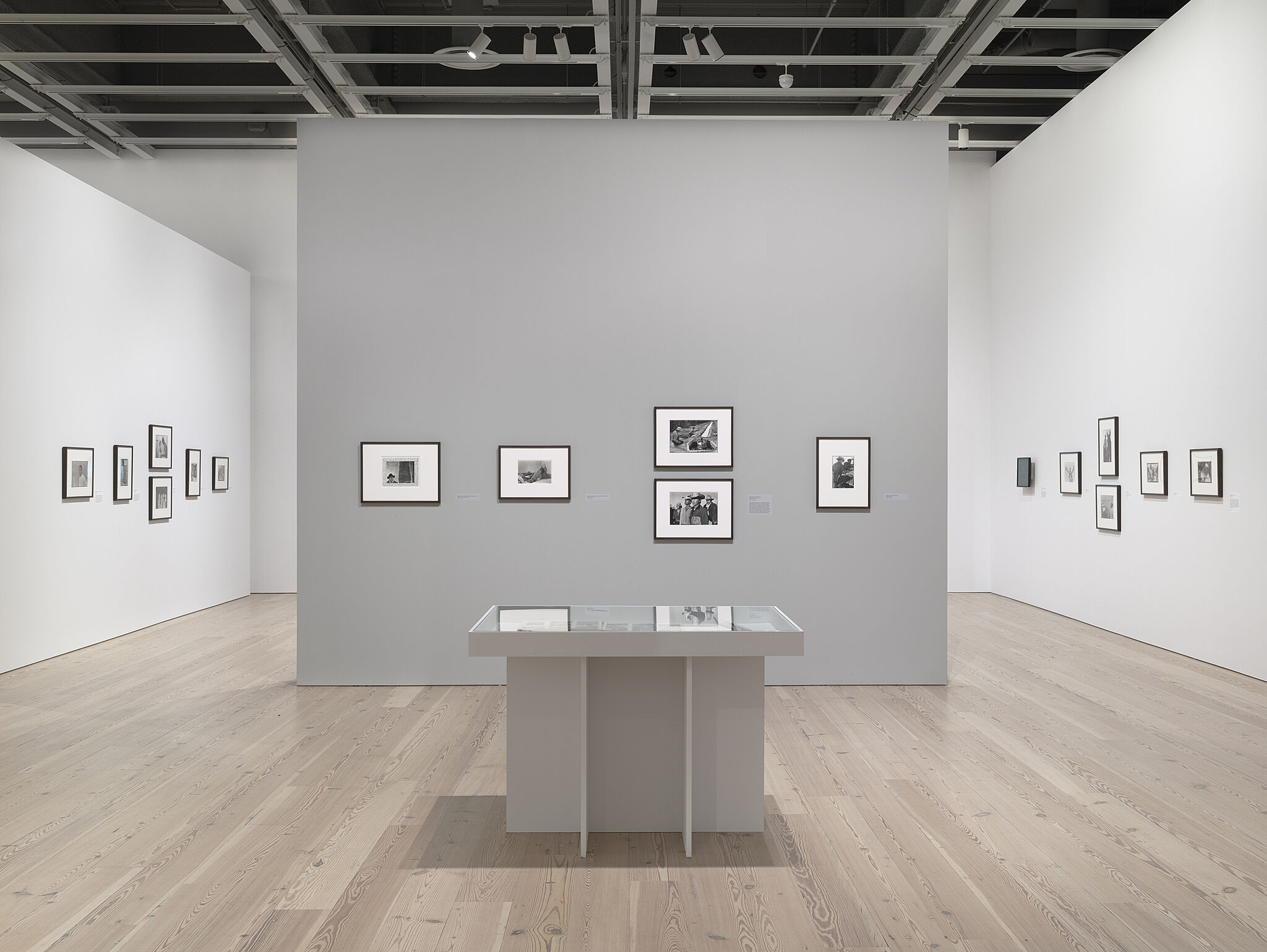 Photos on the wall in a gallery during an exhibition by Danny Lyon.