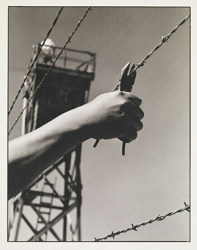 Black and white photograph of a hand clipping a barbed wire fence.