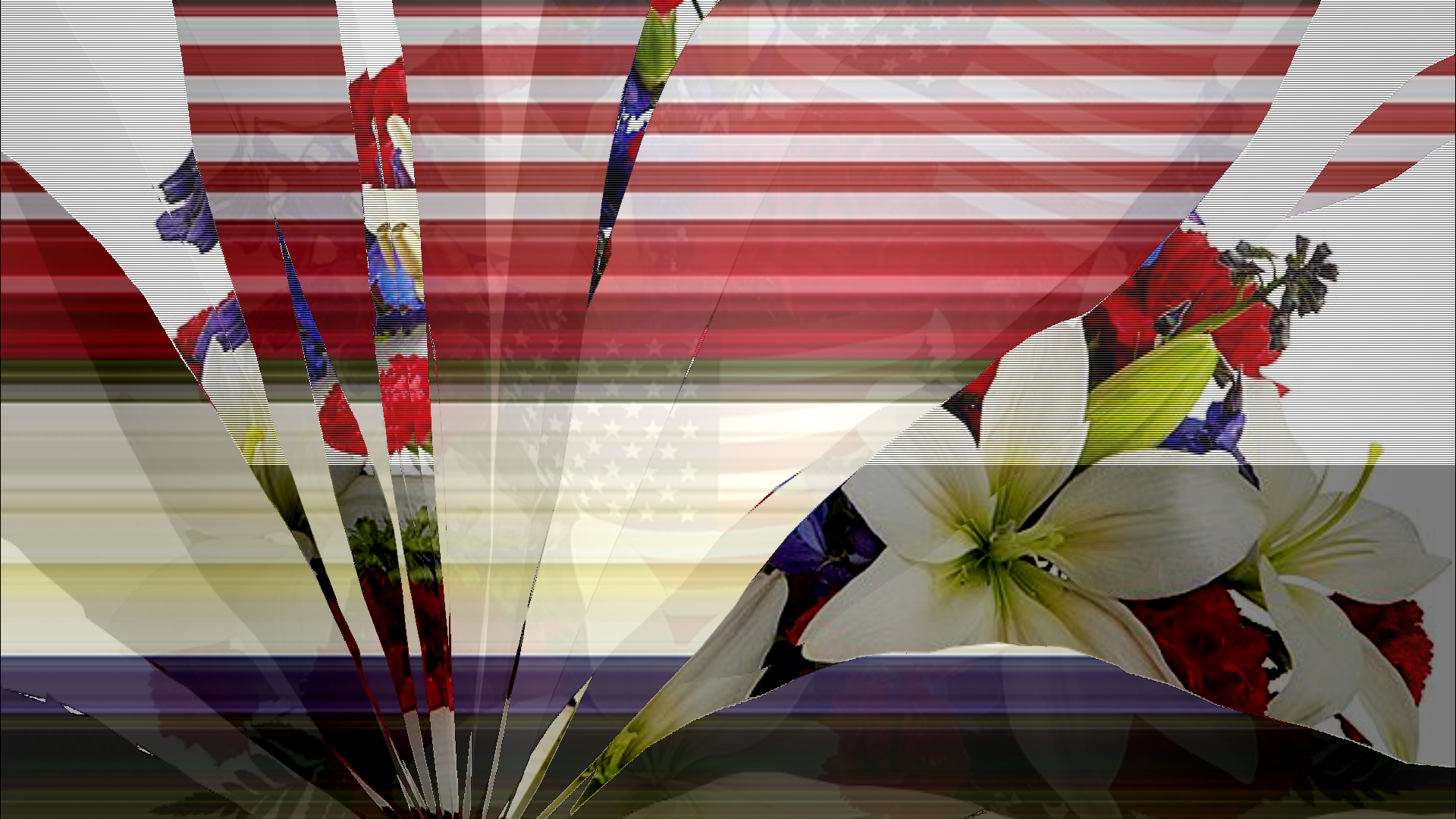 A cracked screen showing a distorted image of the American flag and a floral arrangement.
