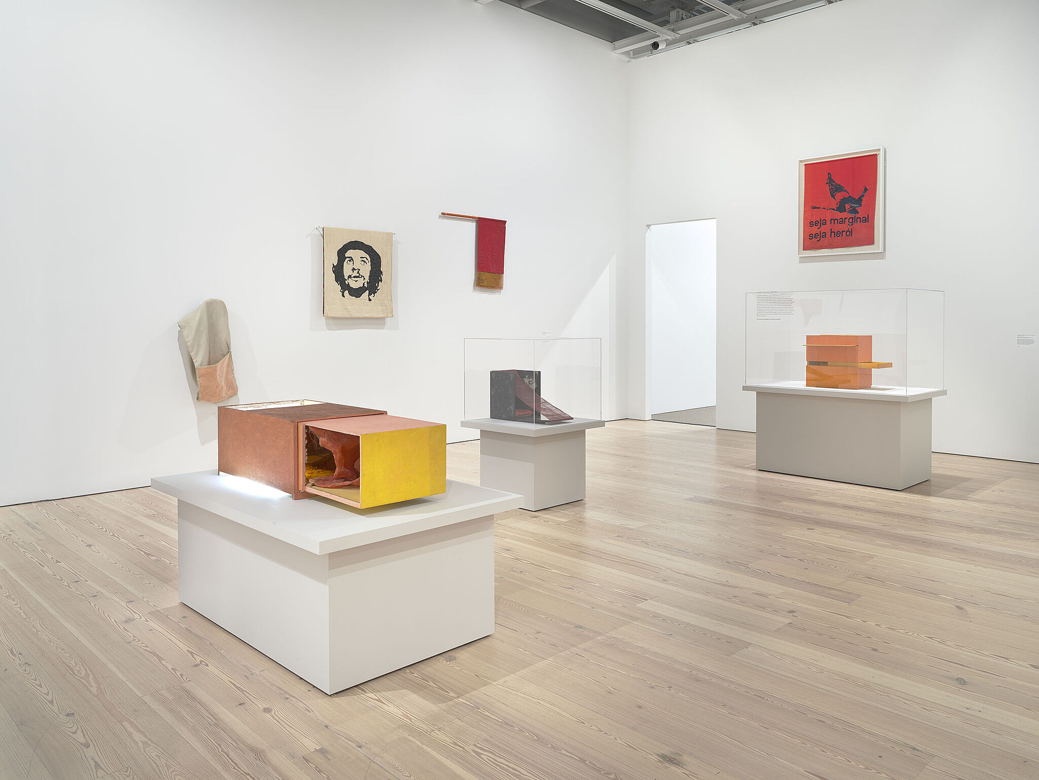 Installation view of Hélio Oiticica: To Organize Delirium