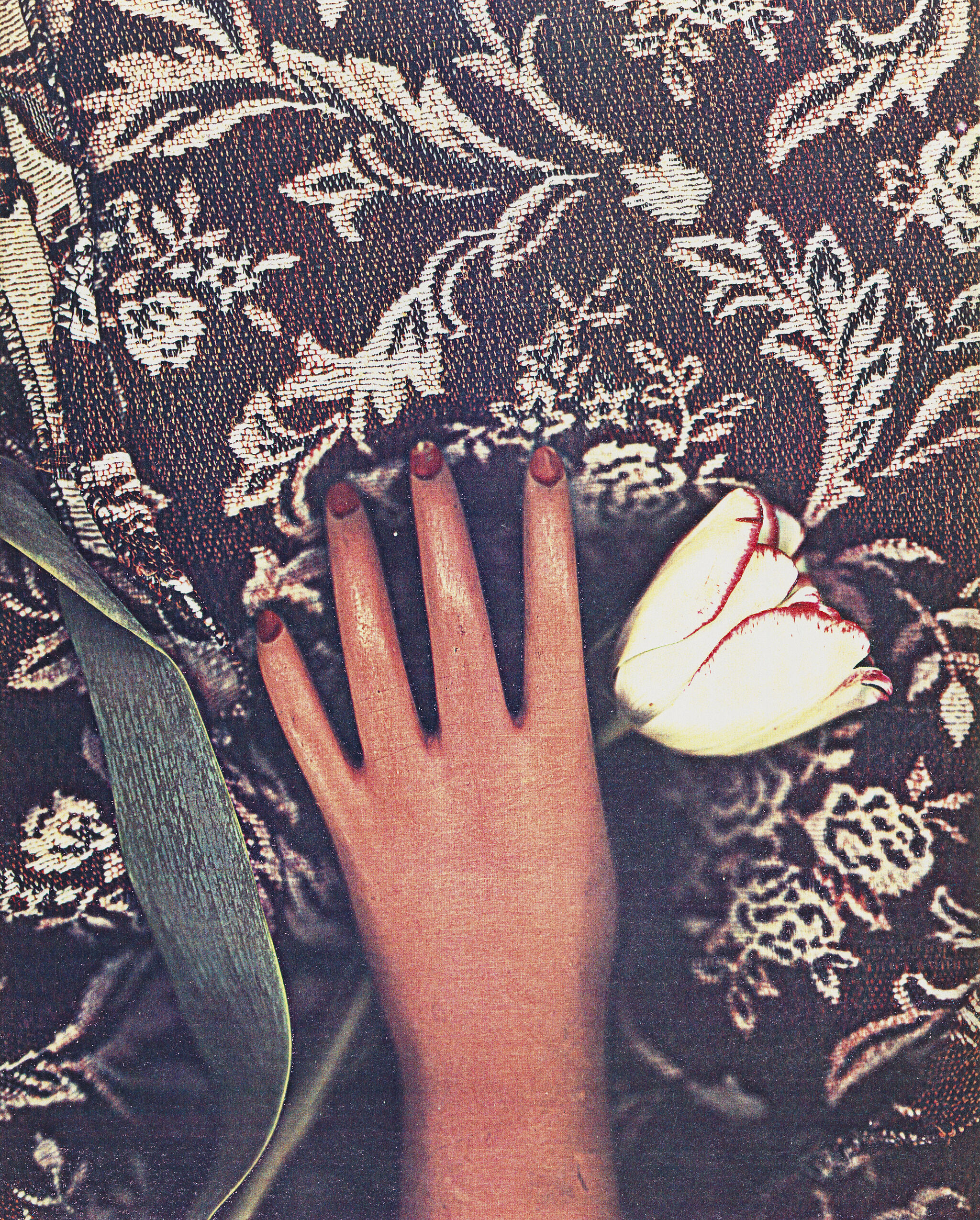 Photocopy collage of a woman's hand holding a flower.