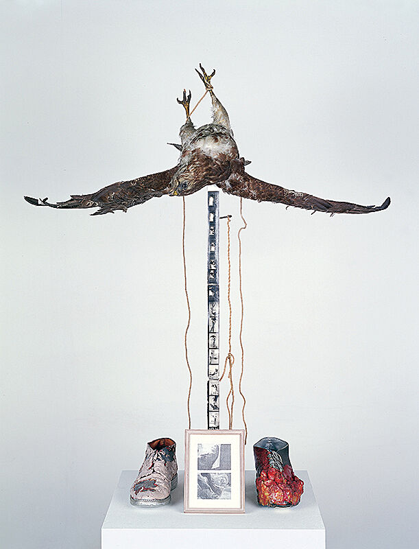 Sculpture with taxidermic bird, shoes, string and two framed black and white photographs.