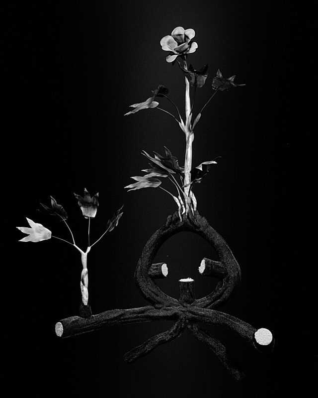 A black and white print of flowers and their roots.