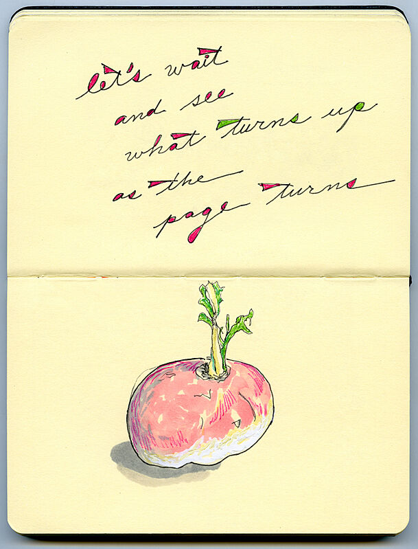 Sketch of a beet and some texts.