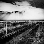 High contrast black and white photo of a landscape with fence receding into the distance