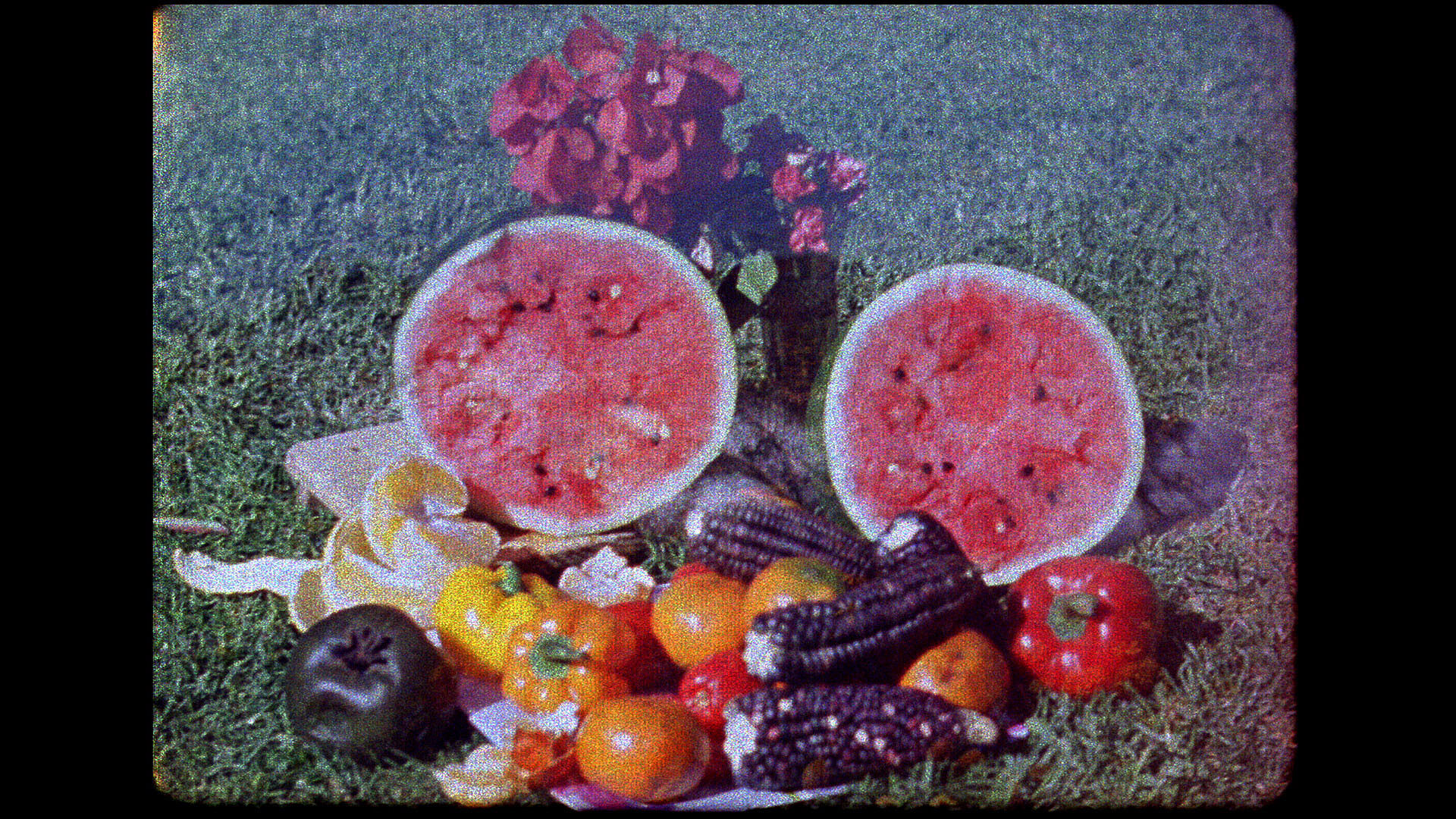 A grainy film image depicting a large array of fruits displayed on a lawn.