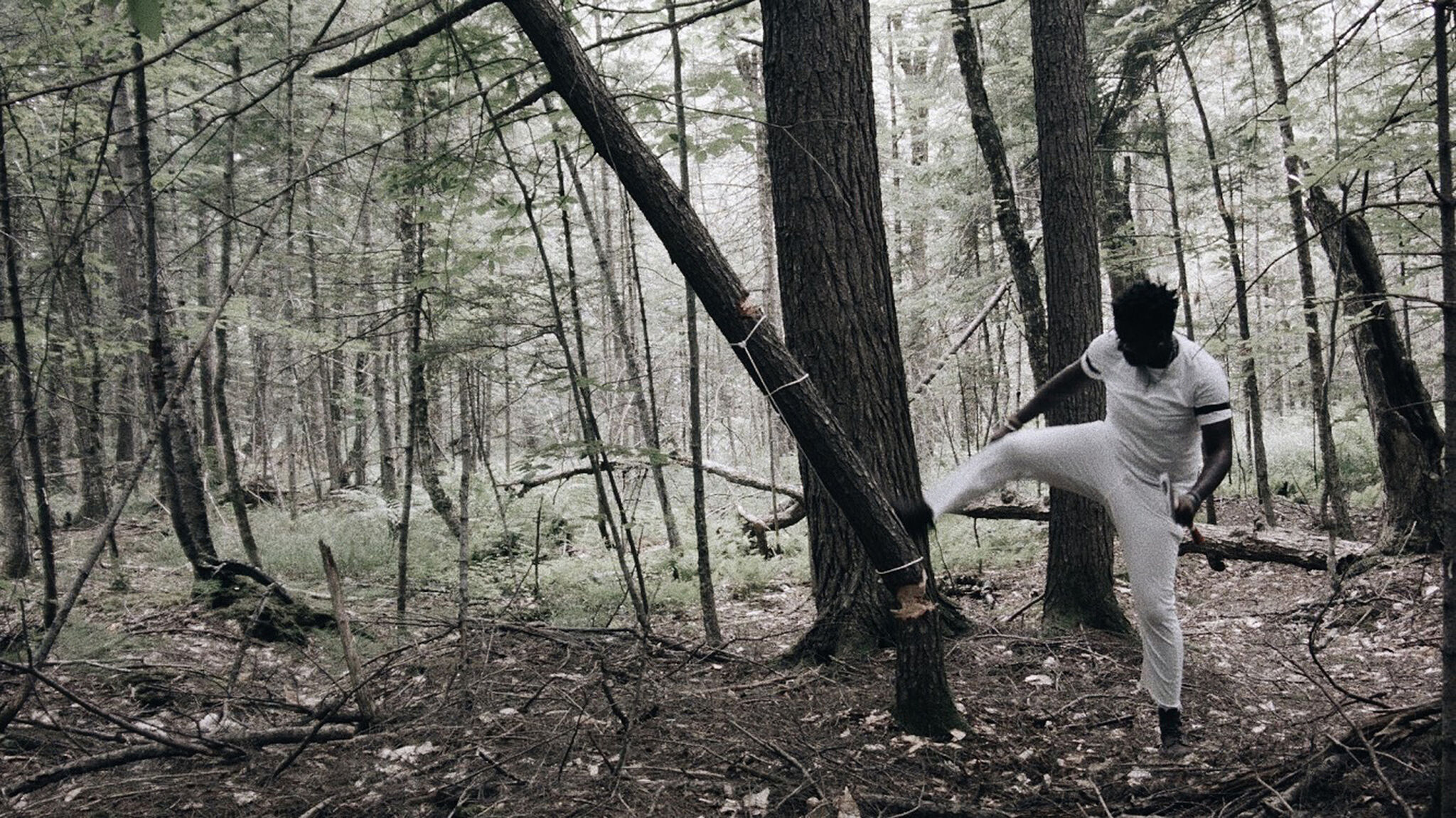 A video still of a person dressed in white in a forest kicking down a tree.