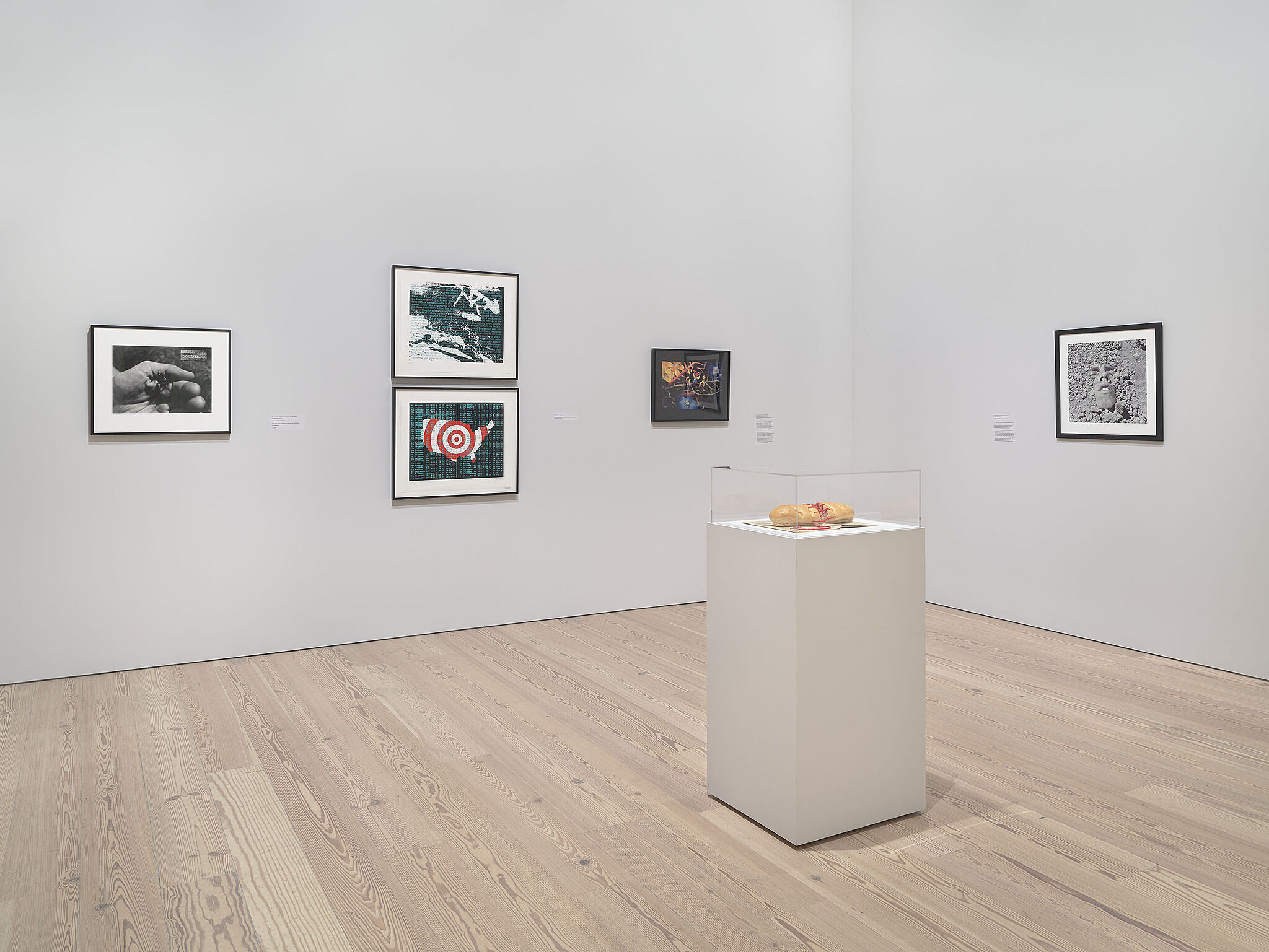 An image of the Whitney galleries with various artworks on the wall and in cases
