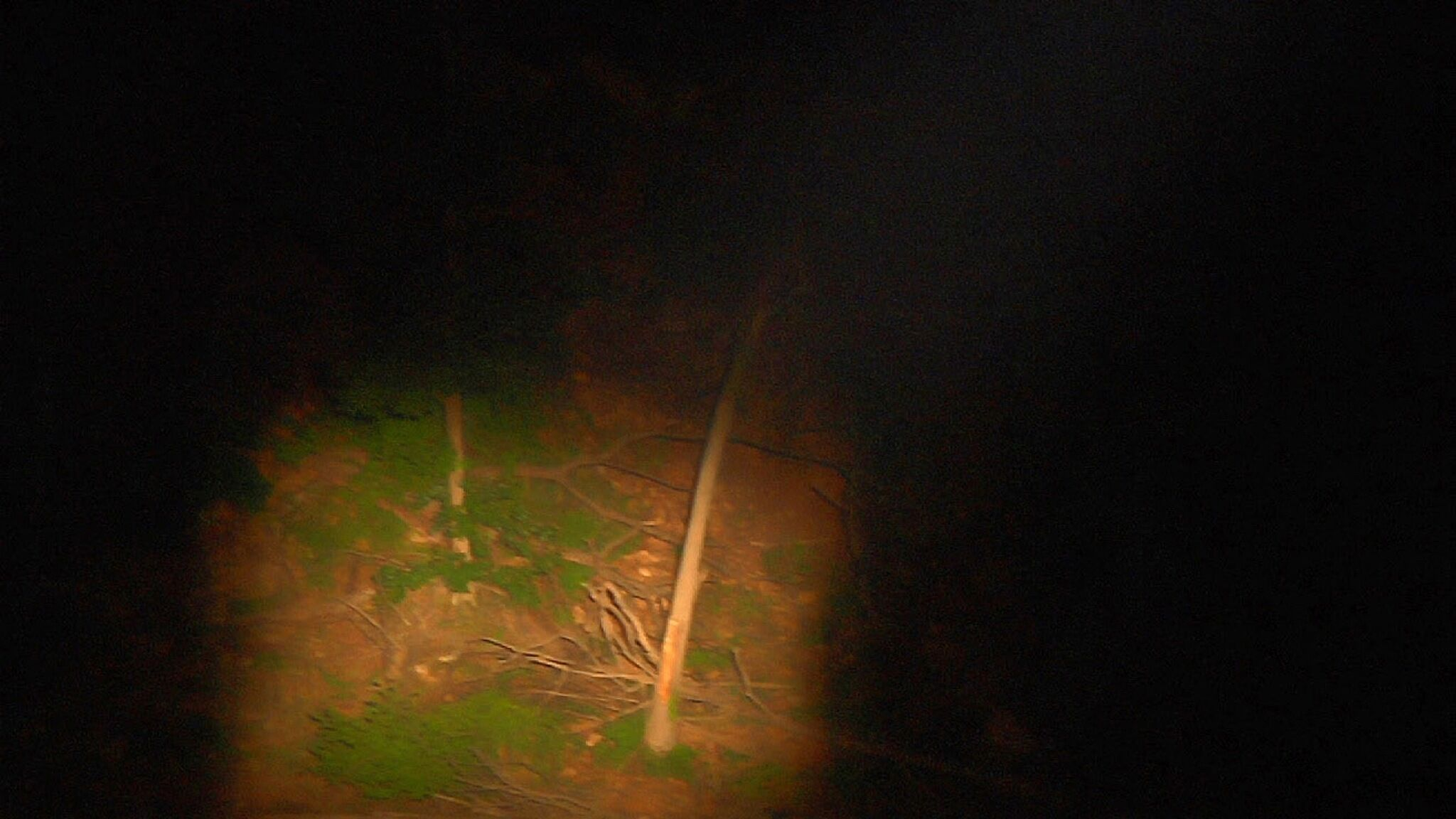 A video still of a dark night.