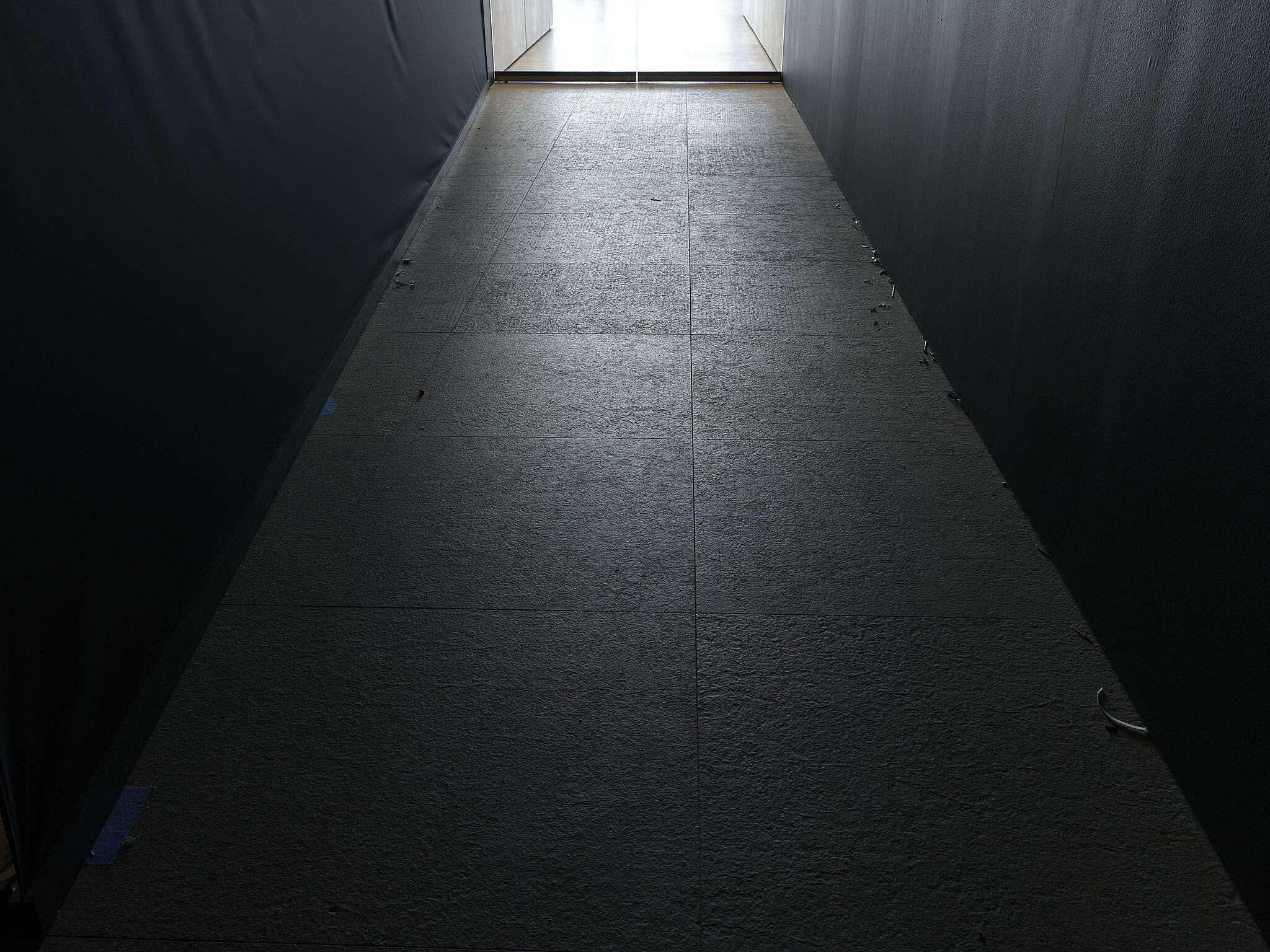 A dark hallway with visual debris.