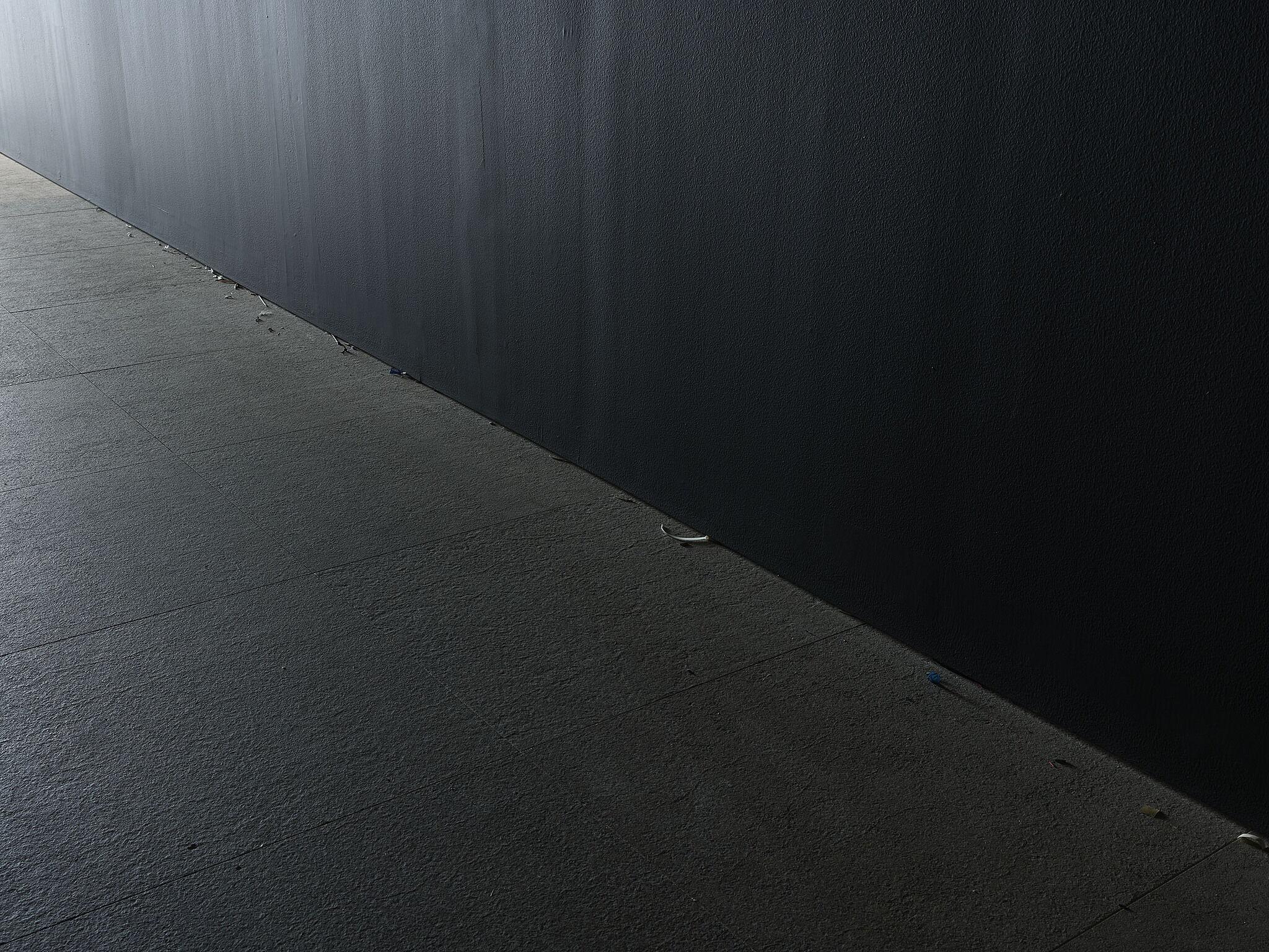 A dark hallway with visual debris.