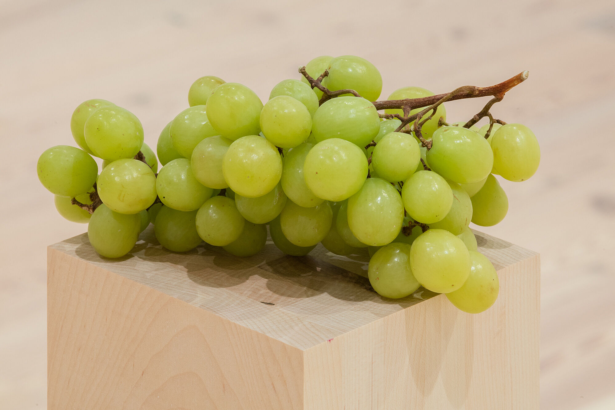 A photo of grapes on a plinth.