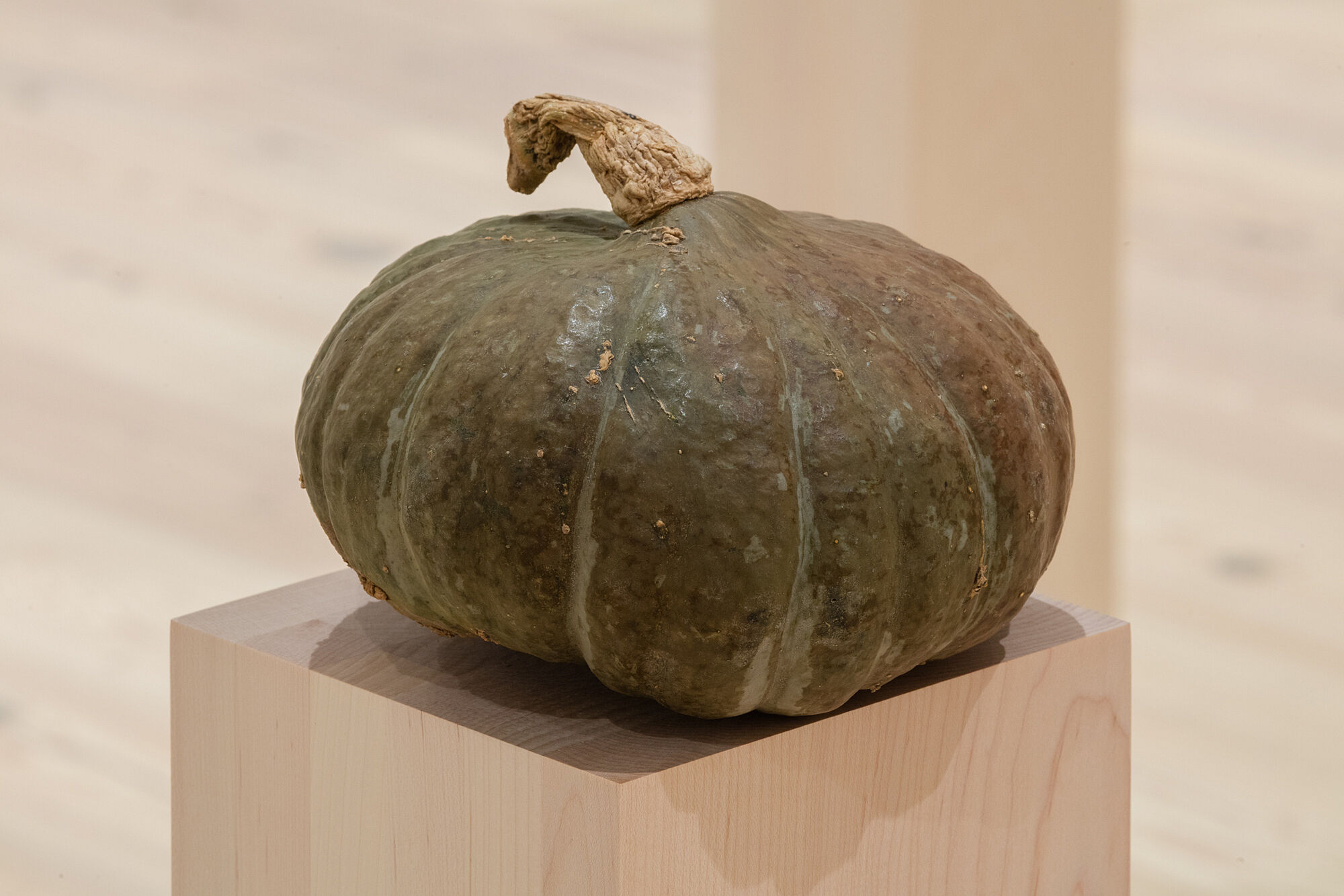 A photo of a kobocha squash on a plinth.
