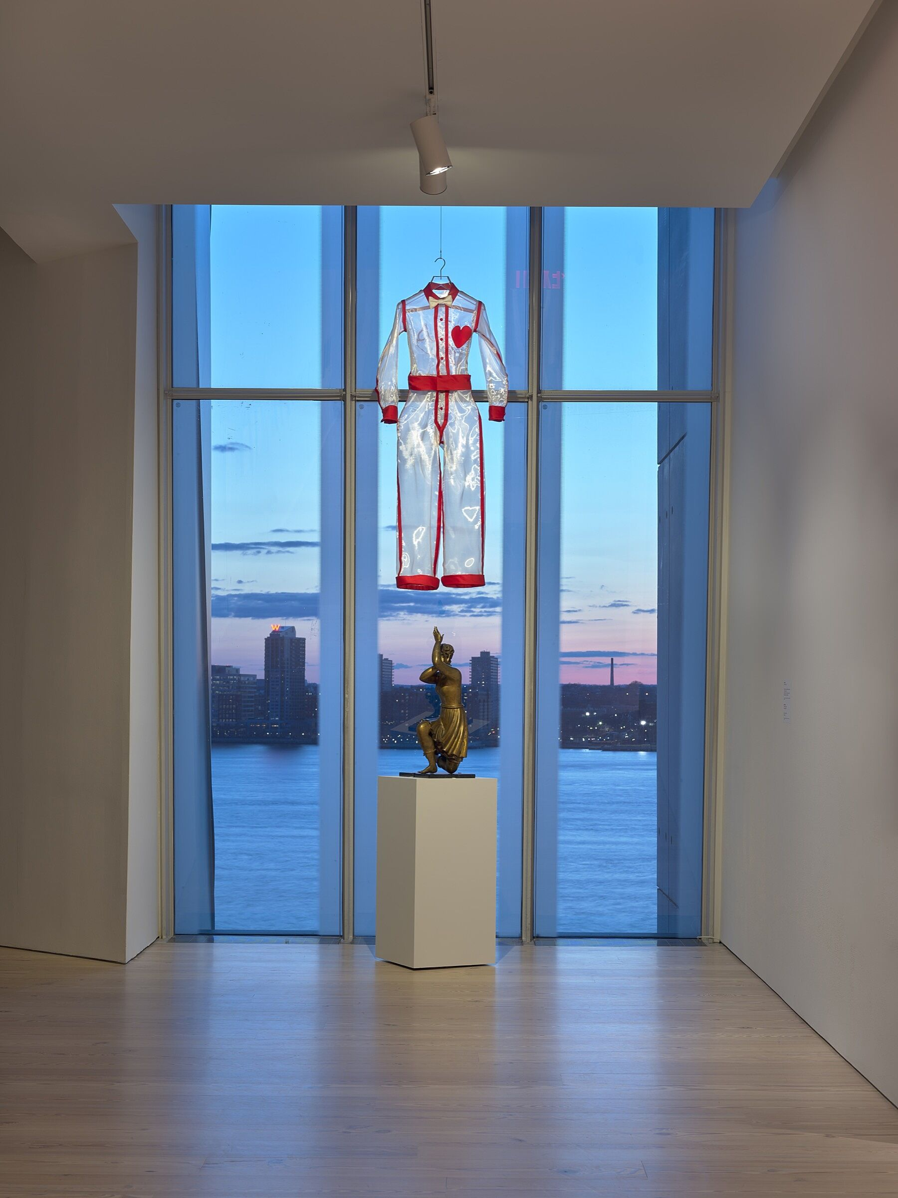 A sheer white costume hanging in front of a window.
