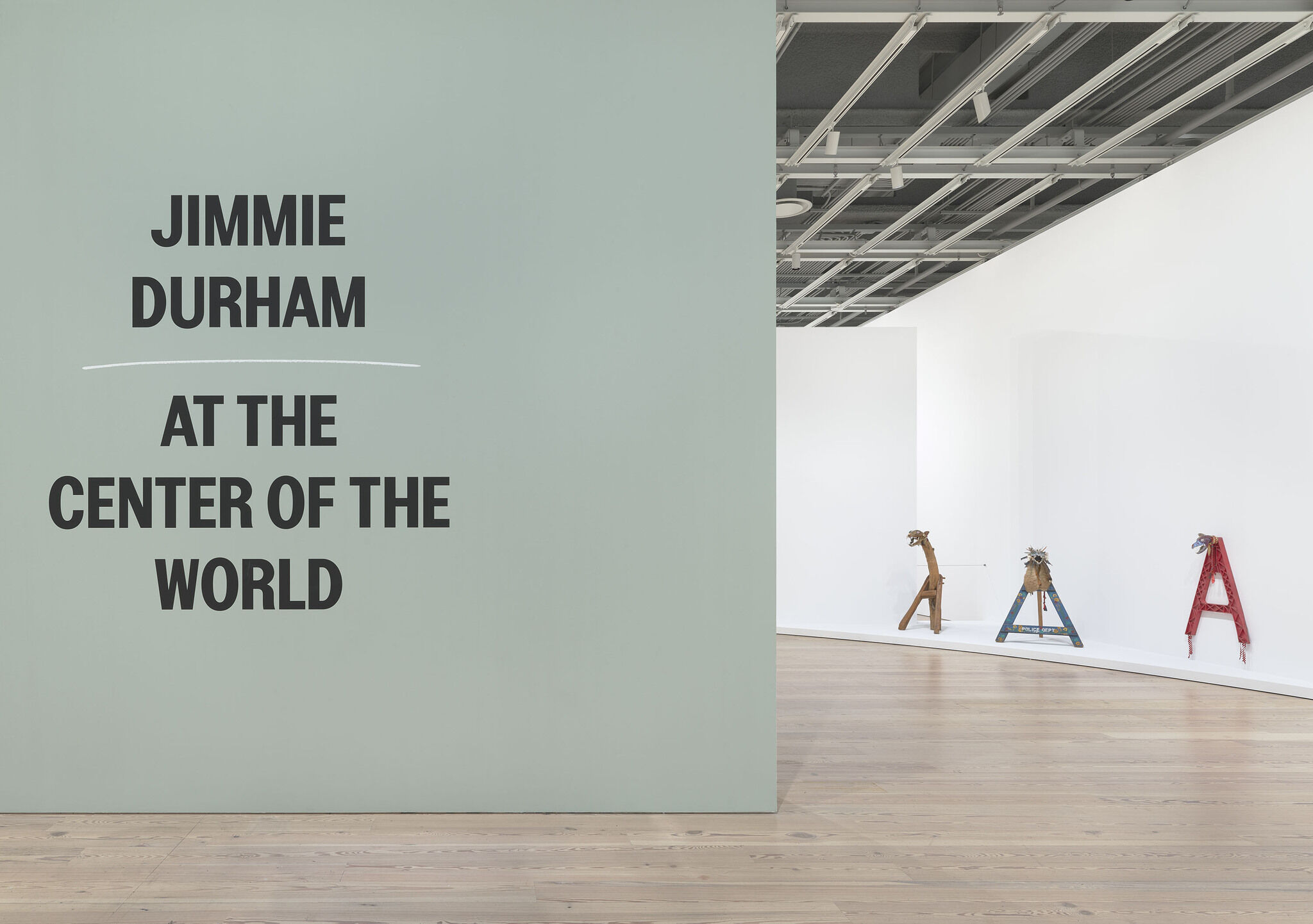 Gallery view of Jimmie Durham: At the Center of the World