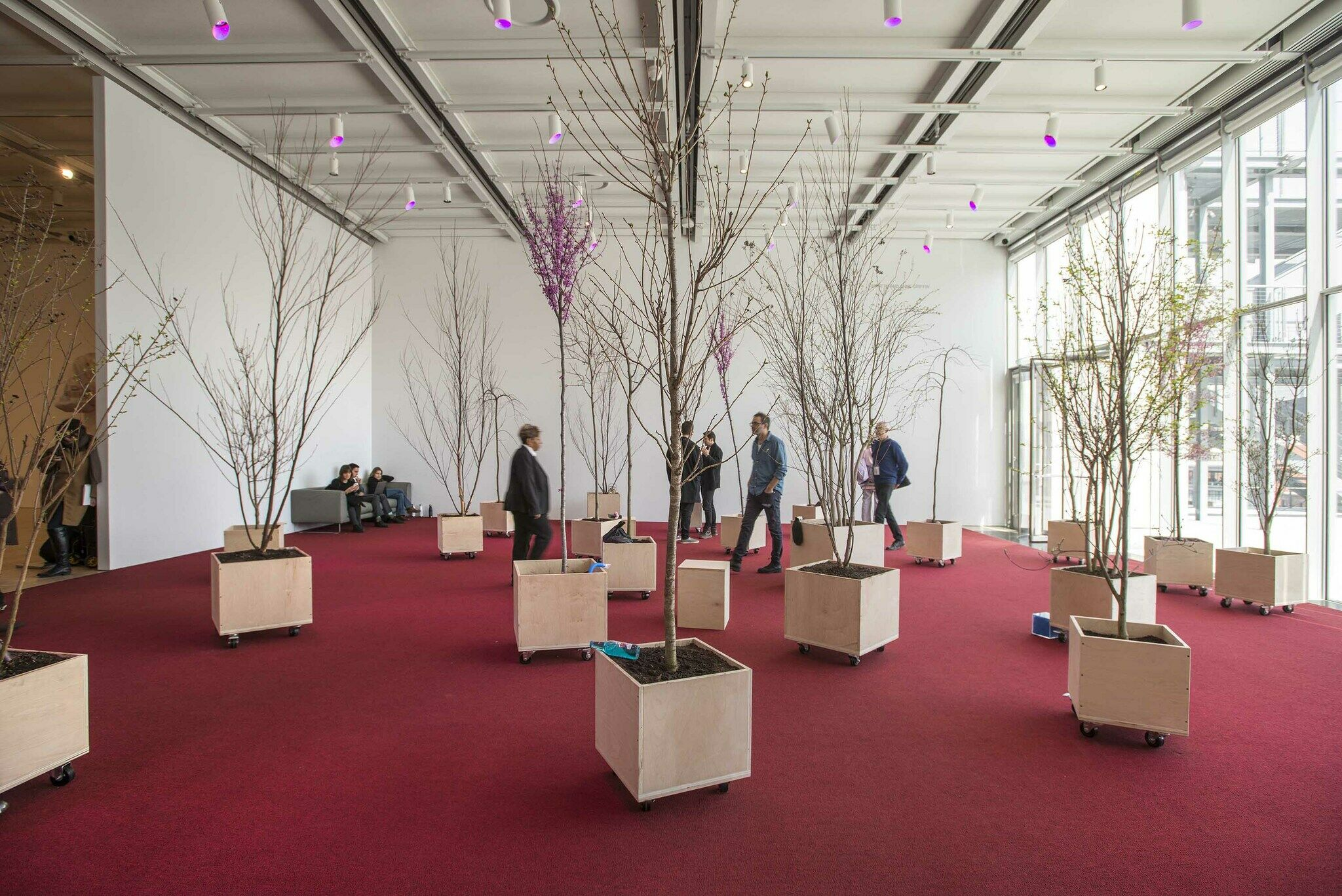 A gallery filled with trees.