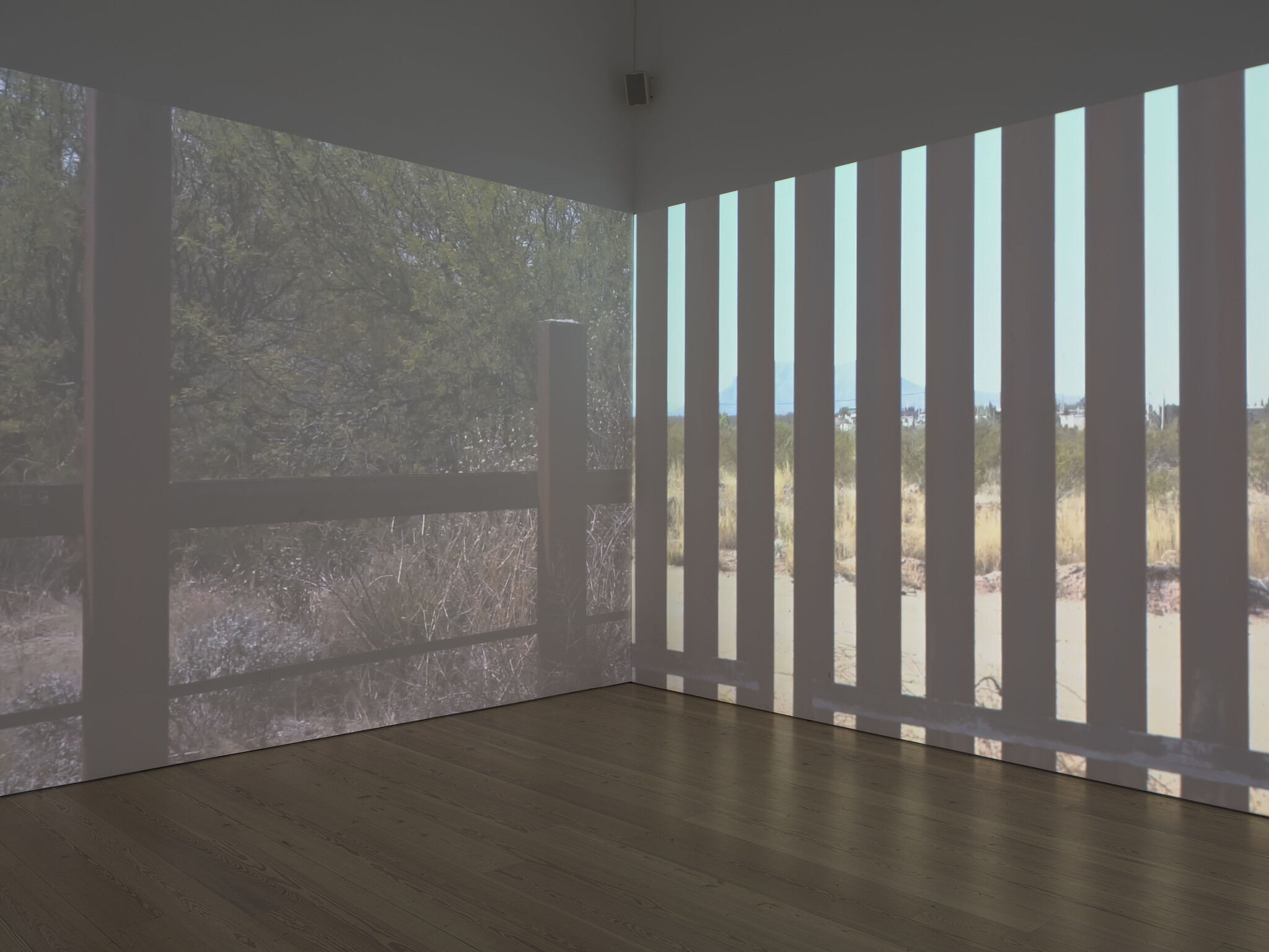A gallery with a video projected on the walls.