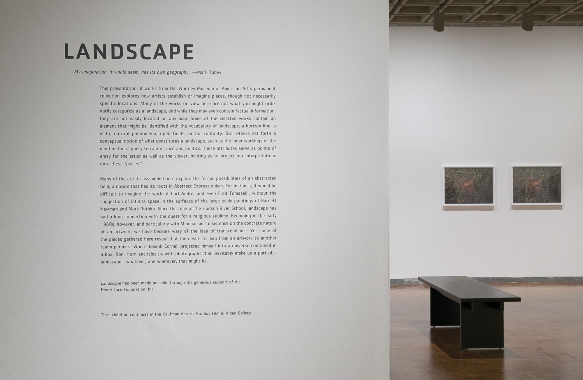 Wall text for Landscape exhibition.