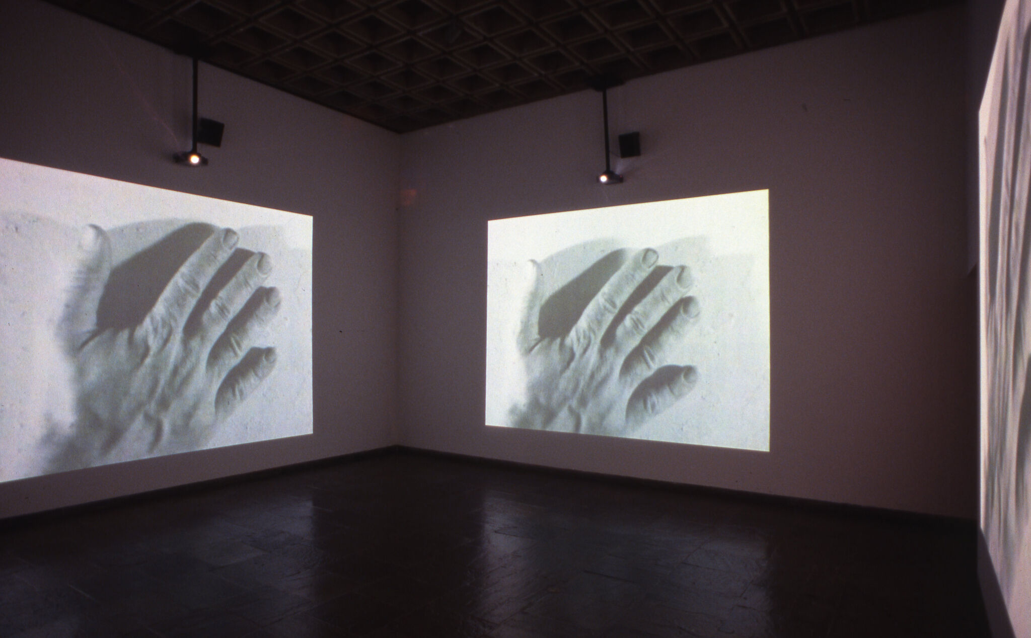 Black and white images of a hand projected on the walls of a gallery.