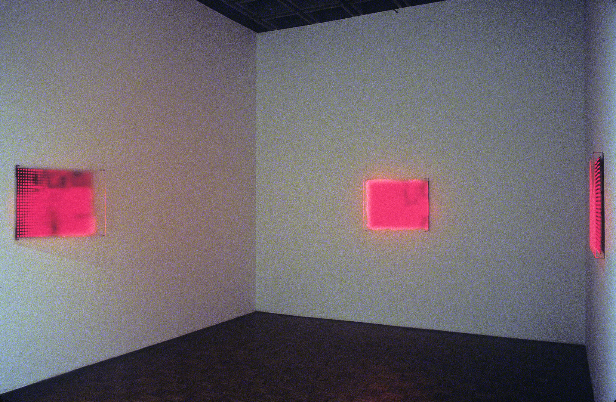 A gallery with neon pink works of art on display.