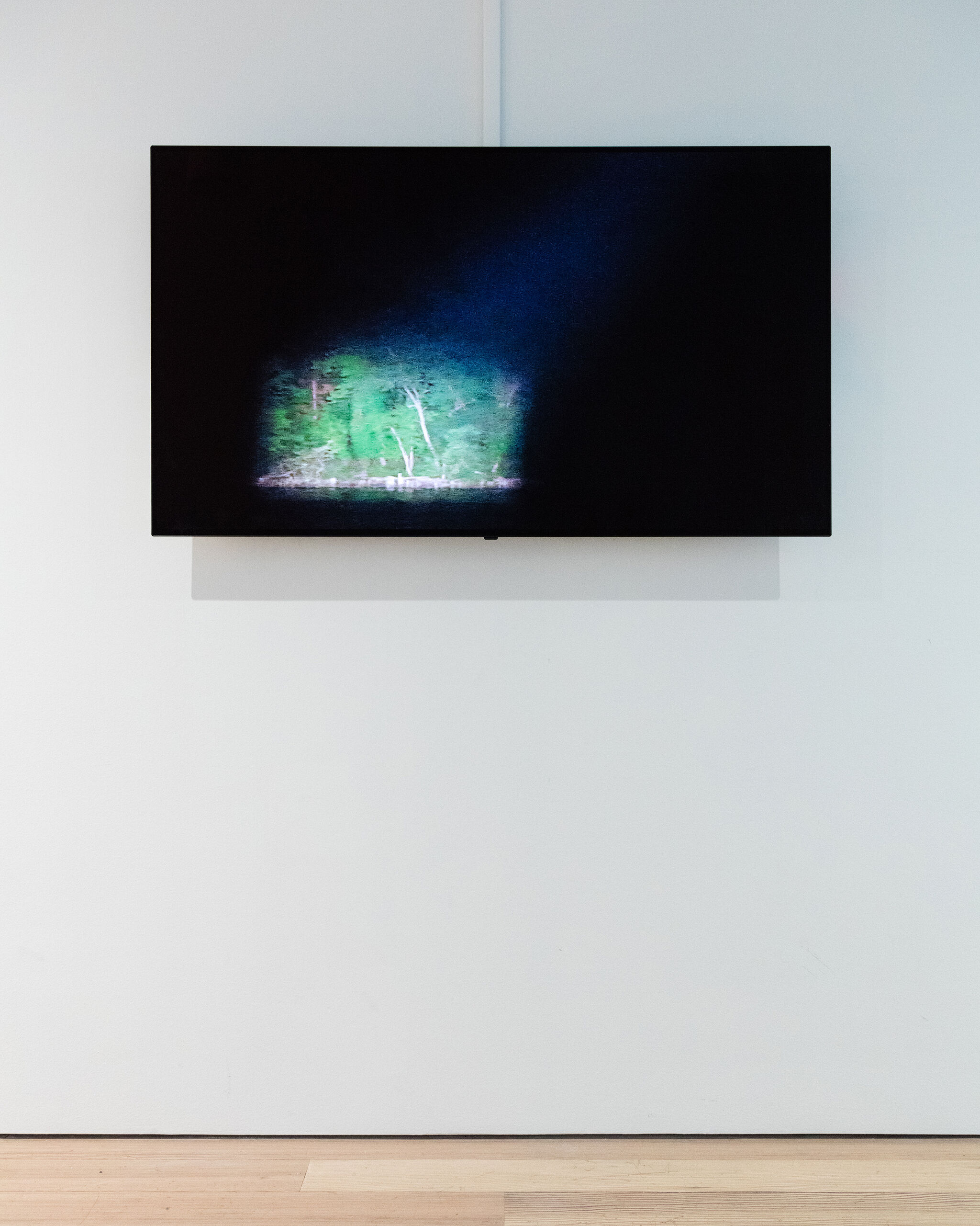A monitor in a gallery displaying a nighttime view of a spotlight pointed at green trees.