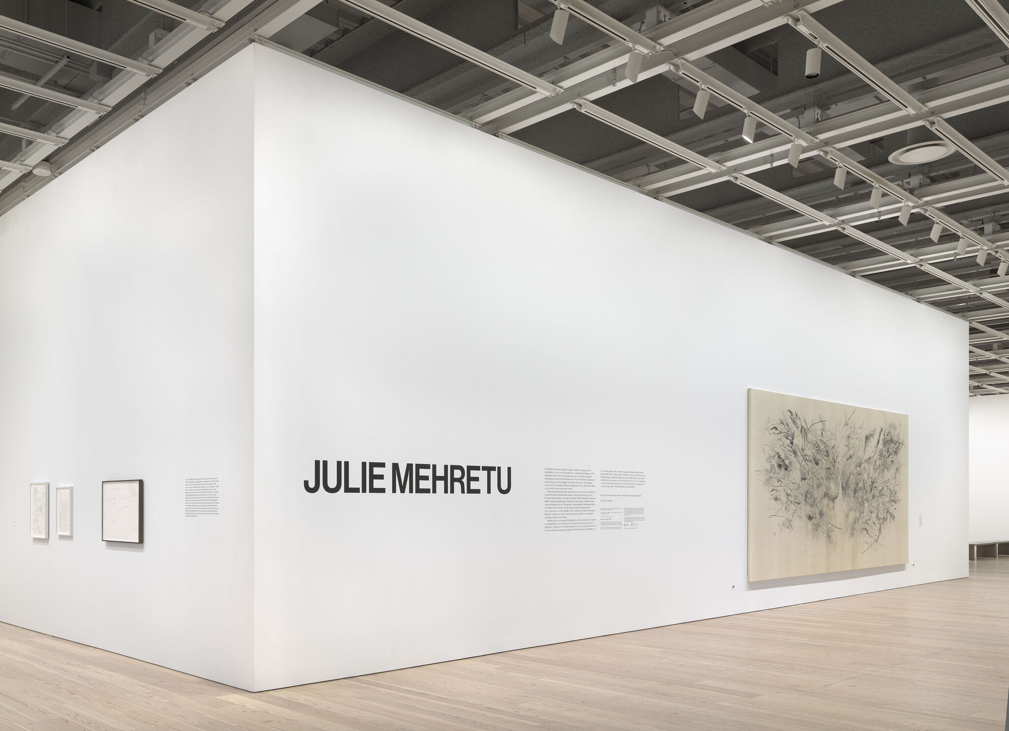 The opening exhibition wall for Julie Mehretu, which features the exhibition's decal and introductory wall text.