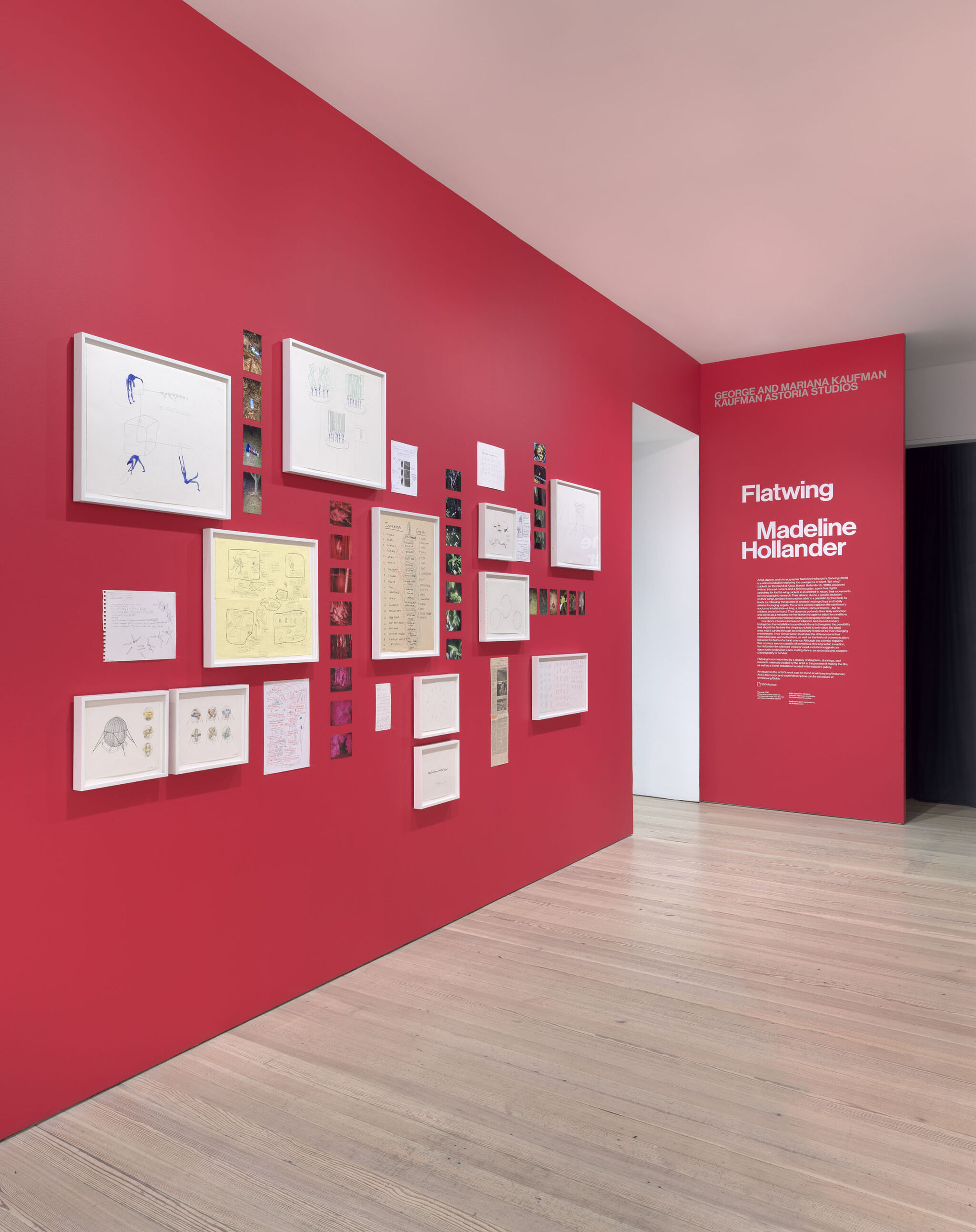 A red wall with a text vinyl and framed pieces from the Madeline Hollander exhibition.